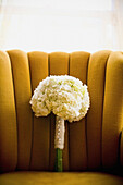 'A Bouquet Of White Flowers; Jordan, Ontario, Canada'