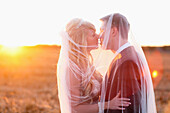 'A Bride And Groom Kissing In A Field Draped With The Veil; St. Catherine's, Ontario, Canada'