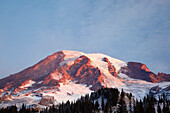 'Washington, United States Of America; Sunrise On Mount Rainier At Paradise Park In Mt. Rainier National Park'