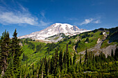 'Washington, United States Of America; Mount Rainier In Paradise Park In Mt. Rainier National Park'