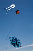 'Decorative Kites Flying In A Blue Sky; Port Colborne, Ontario, Canada'