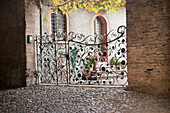 'An Intricately Designed Gate; Italy'