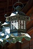 'A Hanging Lantern At Kasuga-Taisha Shrine; Nara, Nara Prefecture, Japan'