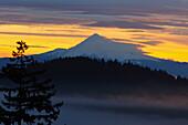 'Sunrise And Fog Over Mount Hood; Oregon, Usa'