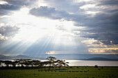 'Sunlight Shines Down Through The Clouds Onto A Lake; Kenya'
