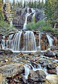 Tangle Falls, Jasper National Park, Alberta, Canada