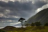 'Dark Clouds Over A Landscape Along The Coast; Ardnamurchan, Argyll, Scotland'