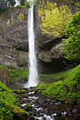 'Narrow Waterfall With Moss Covered Cliffs; Oregon, United States of America'