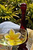 Spa Elements, Yellow Plumeria Floating In Glass, With Glass Bottle, Loofah And Towel.