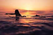 'A Woman Paddling On A Surfboard At Sunset; Tarifa, Cadiz, Andalusia, Spain'