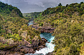 'Waikato River Running Through The Tree Covered Landscape; Taupo, New Zealand'