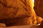 Wall Street Canyon, Bryce Canyon National Park Utah