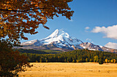 'Mount Hood And Autumn Colours In Hood River Valley; Oregon, United States of America'