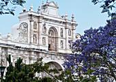 'Saint Joseph Cathedral; Antigua, Guatemala'