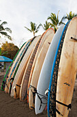 'Surfboards Standing Up Against A Rack On The Beach; Sayulita, Mexico'