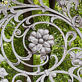 'Flower And Swirl Design On A Metal Gate Of The Cathedral Of The Resurrection Of Christ; St. Petersburg, Russia'