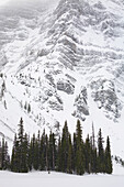 'Evergreen Trees On A Shoreliine Of A Snow Covered Lake Against A Snowy Mountain Wall; Kananaskis Country, Alberta, Canada'