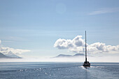 'A Sailboat Cruises On A Sunny Day In The Gulf Islands; British Columbia, Canada'