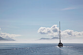 'A sailboat cruises on a sunny day in the gulf islands;British columbia canada'