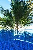 'Upward underwater view from swimming pool arue resort near papeete;Tahiti nui south pacific'
