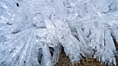 Close Up Of Hoar Frost Along The North Fork Of The Nooksak River During Winter, Mount Baker National Forest, Washington, Usa