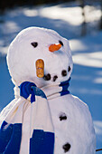 Snowman In The Woods In Afternoon Light After Making Snow Angel Interior Alaska Winter