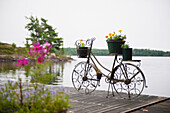 'A deck on a lake with a decorative flower pot in the shape of a bicycle; kenora ontario canada'