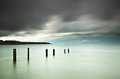 'Wooden posts in a row in the shallow water along the coast under storm clouds;St. mary's bay northumberland england'