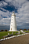 'Cape willoughby lighthouse;Australia'