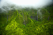 'Waterfalls flowing through lush green hills under the low lying clouds;Hawaii united states of america'