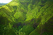 'Rugged mountainside covered with lush green foliage;Hawaii united states of america'