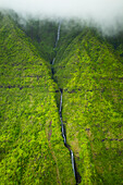 'A stream flowing down a lush green mountainside with low lying cloud;Hawaii united states of america'