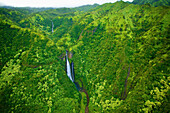 'A stream flowing through the mountains covered with lush green trees;Hawaii united states of america'