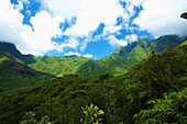 'Lush growth on the mountains and valleys on an hawaiian island;Hawaii united states of america'