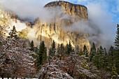 'Yosemite national park's el capitan (el cap) peaks through winter storm clouds during a december storm;California, united states of america'