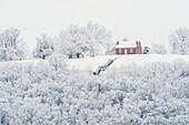 'John rankin house in winter;Ripley, ohio, united states of america'