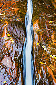 'Water flowing in beautiful stone rivet along the subway trail in zion national park,Utah, united states of america'