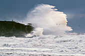 'A large wave crashes into shore;La isla tarifa cadiz andalusia spain'