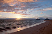 'Footprints in the sand along the water's edge at sunset;Honolulu hawaii united states of america'