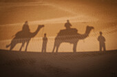'Shadow of camels with riders on the sand;India'