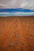 'Tire tracks in the dirt on a desert landscape;Klein-aus vista namibia'