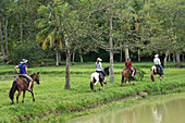 'A Family Horseback Riding On A Trail Along The Water's Edge; Finca El Cisne, Honduras'
