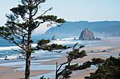'Haystack Rock and Tillamook Head are well-known landmarks on the Oregon Coast; Oregon, United States of America'