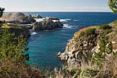 'Headland Cove, Point Lobos State Reserve; Carmel, California, United States of America'