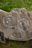 Historical petroglyphs at a protecteds archaeological site sign, Wrangell, Southeast Alaska
