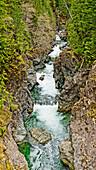 'A creek flowing through a deep canyon; British Columbia, Canada'