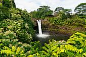'Rainbow falls; Hilo, Island of Hawaii, Hawaii, United States of America'