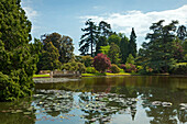 View across Ten Foot Pond, Sheffield Park Garden, East Sussex, Great Britain