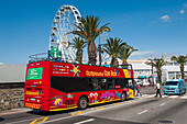 City tour bus, ferris wheel in background, Waterfront, Cape Town, Western Cape, South Africa