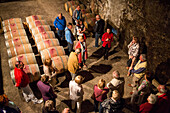 Tour group in the wine cellar of Chateau du Taillan winery, Le Taillan, Medoc, near Bordeaux, Gironde, Aquitane, France